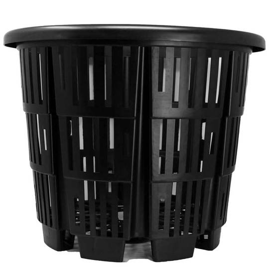 No 15 rediroot plastic pot
