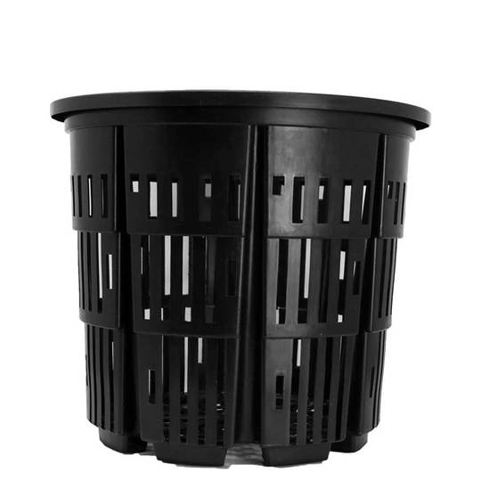 No 7 rediroot plastic pot