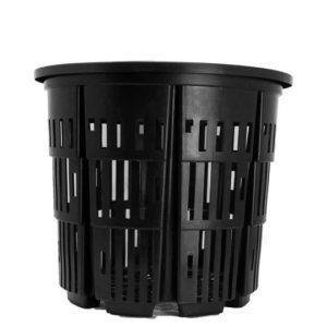 No 7 rediroot plastic pot